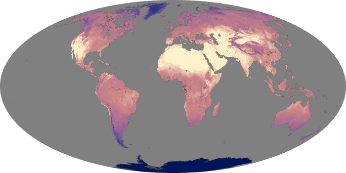 Global Map Land Surface Temperature Image 173