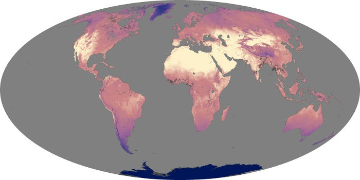 Global Map Land Surface Temperature Image 174