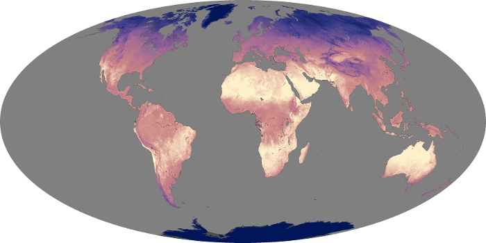 Global Map Land Surface Temperature Image 176