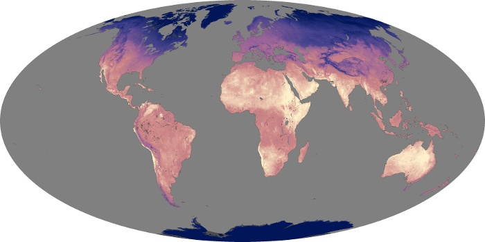 Global Map Land Surface Temperature Image 182