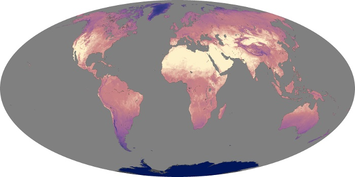 Global Map Land Surface Temperature Image 196