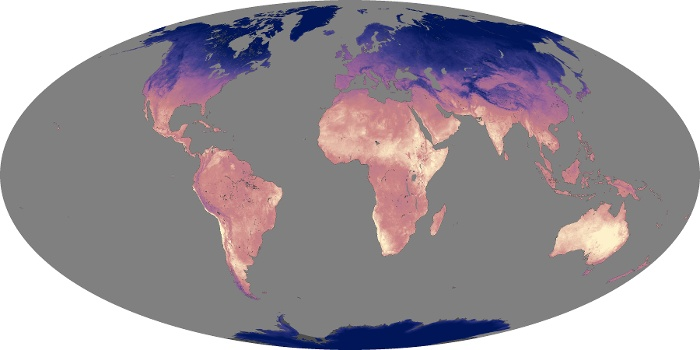 Global Map Land Surface Temperature Image 204