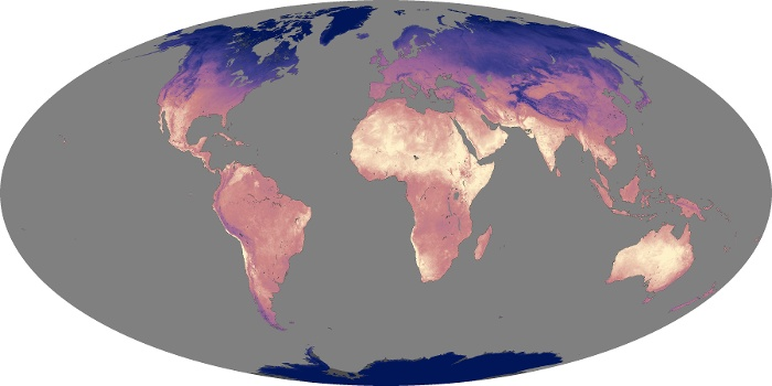 Global Map Land Surface Temperature Image 205