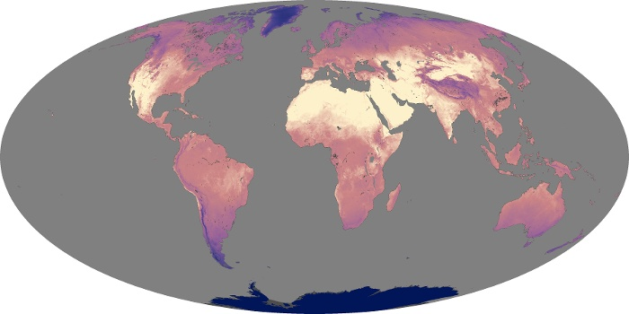 Global Map Land Surface Temperature Image 208