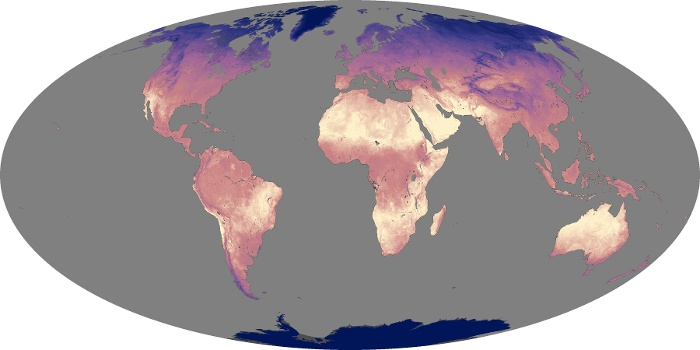 Global Map Land Surface Temperature Image 213