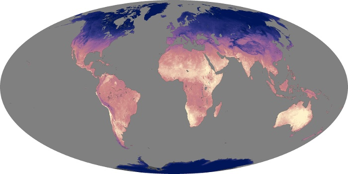 Global Map Land Surface Temperature Image 216