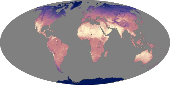 Global Map Land Surface Temperature Image 218
