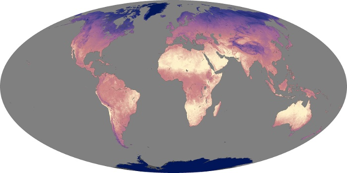 Global Map Land Surface Temperature Image 224