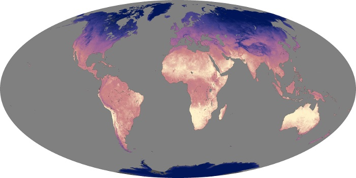 Global Map Land Surface Temperature Image 225