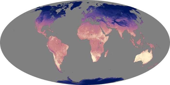 Global Map Land Surface Temperature Image 240