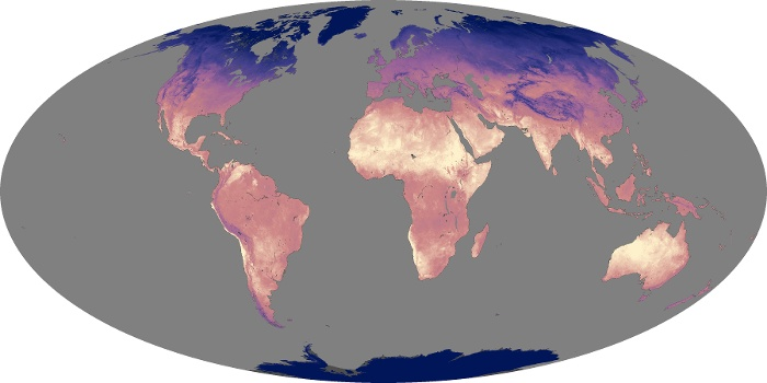 Global Map Land Surface Temperature Image 242