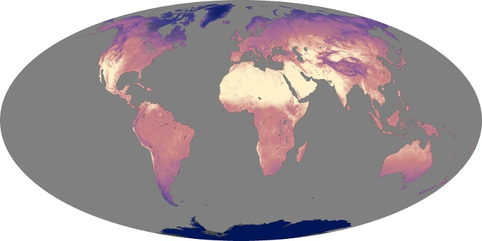 Global Map Land Surface Temperature Image 244