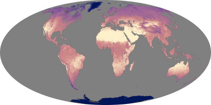Global Map Land Surface Temperature Image 248