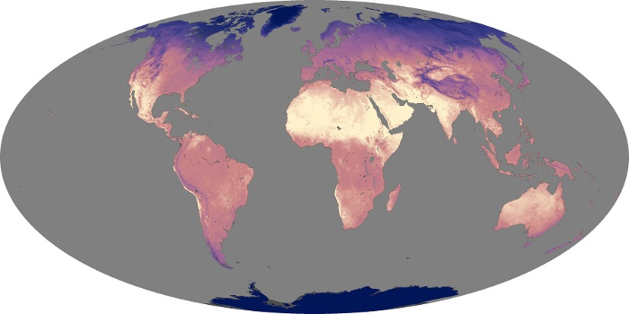 Global Map Land Surface Temperature Image 255
