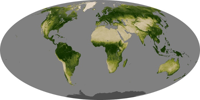 Global Map Vegetation Image 30