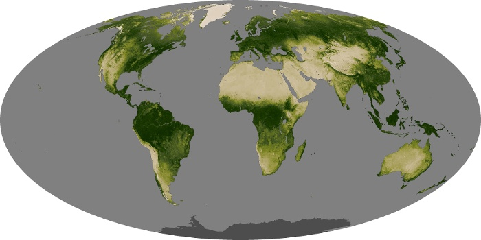 Global Map Vegetation Image 100