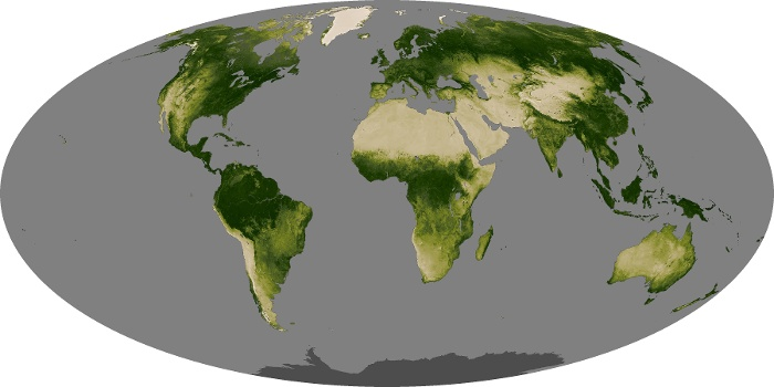 Global Map Vegetation Image 97