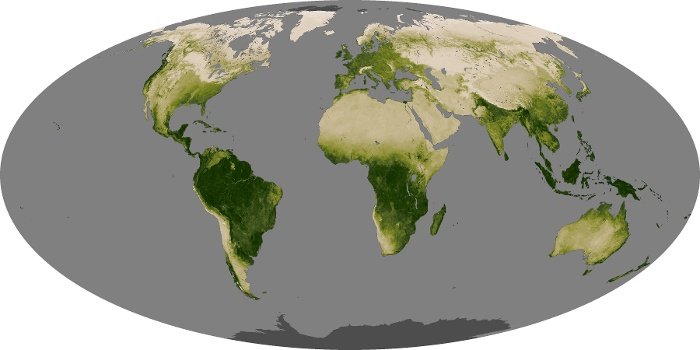 Global Map Vegetation Image 110