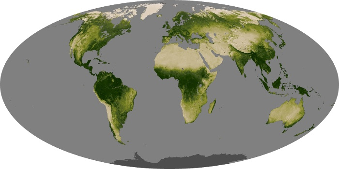 Global Map Vegetation Image 118