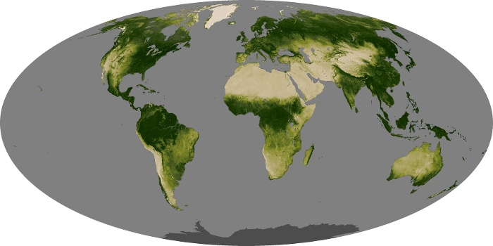 Global Map Vegetation Image 170