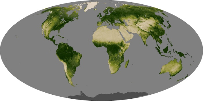 Global Map Vegetation Image 180