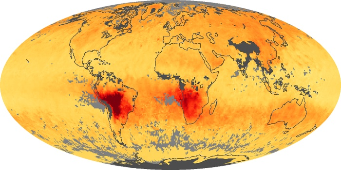 Global Map Carbon Monoxide Image 91