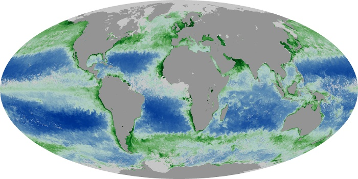 Global Map Chlorophyll Image 9