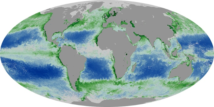 Global Map Chlorophyll Image 57