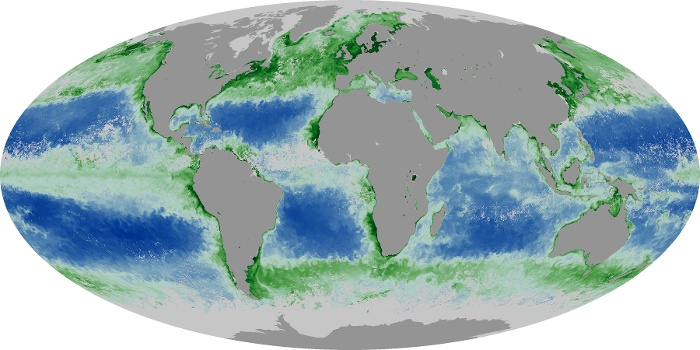 Global Map Chlorophyll Image 10