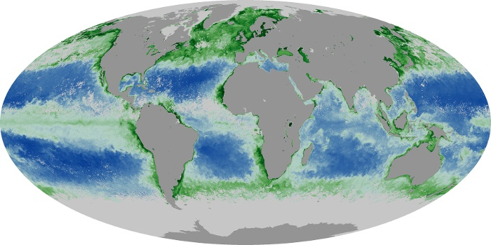 Global Map Chlorophyll Image 11