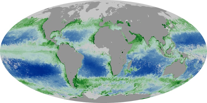 Global Map Chlorophyll Image 67