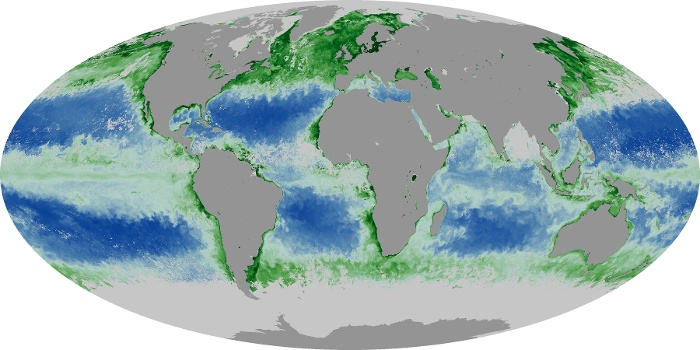 Global Map Chlorophyll Image 71