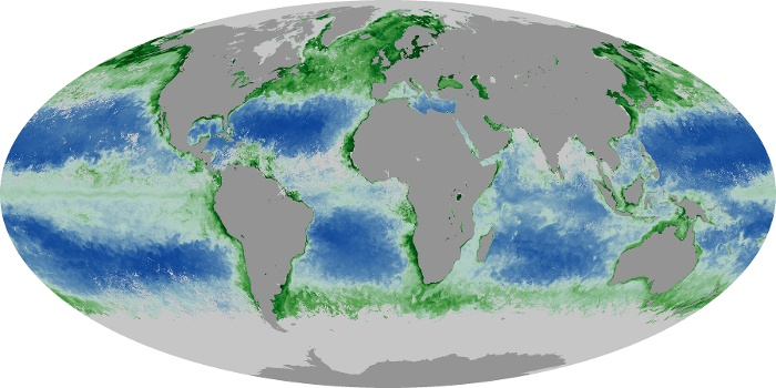 Global Map Chlorophyll Image 83