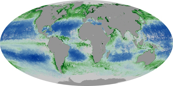 Global Map Chlorophyll Image 87