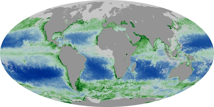 Global Map Chlorophyll Image 103