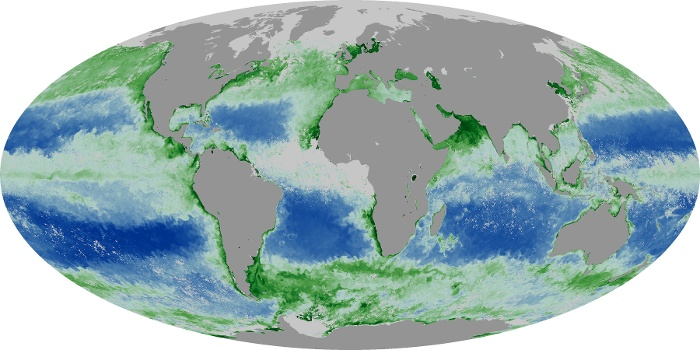 Global Map Chlorophyll Image 68