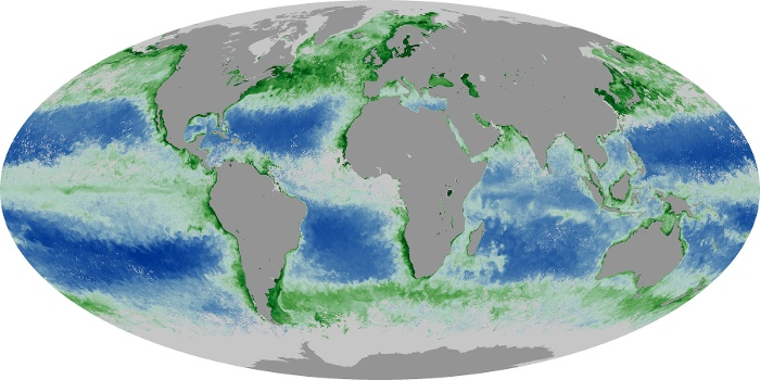 Global Map Chlorophyll Image 70