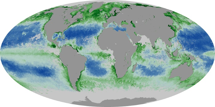 Global Map Chlorophyll Image 86