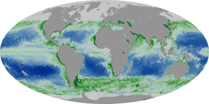 Global Map Chlorophyll Image 90