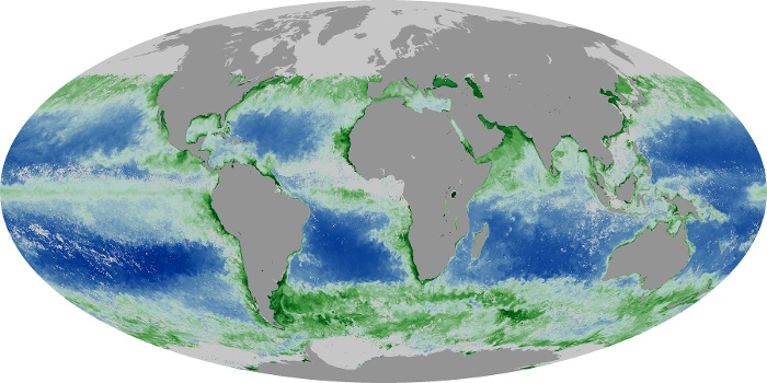 Global Map Chlorophyll Image 150
