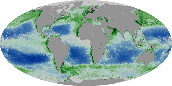 Global Map Chlorophyll Image 105