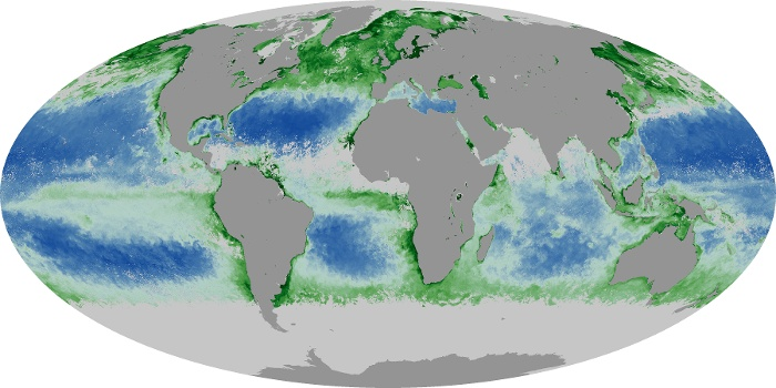 Global Map Chlorophyll Image 156