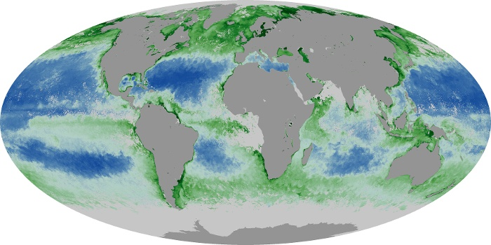 Global Map Chlorophyll Image 158