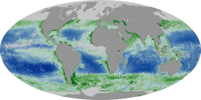 Global Map Chlorophyll Image 162