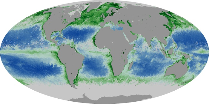 Global Map Chlorophyll Image 167
