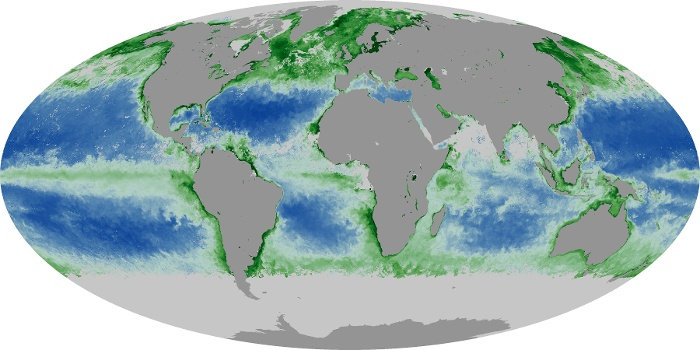 Global Map Chlorophyll Image 168