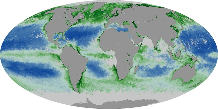 Global Map Chlorophyll Image 170