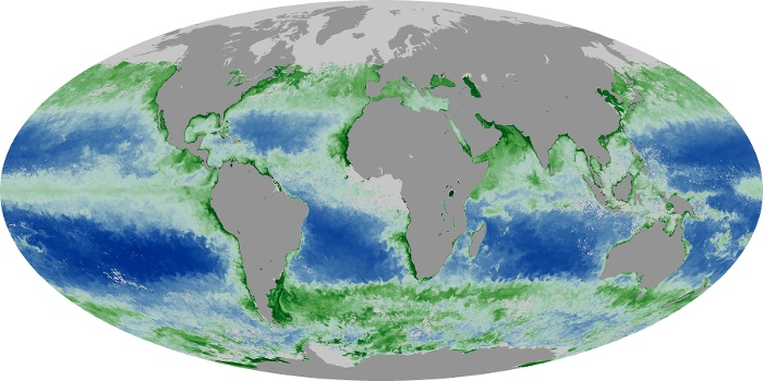 Global Map Chlorophyll Image 175