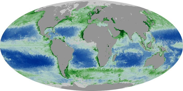 Global Map Chlorophyll Image 129