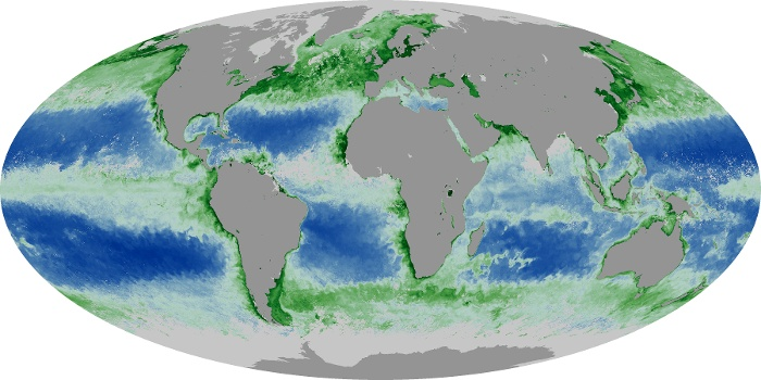 Global Map Chlorophyll Image 130